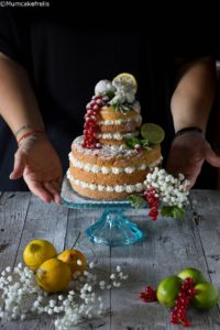 Hugo naked cake di Lisa