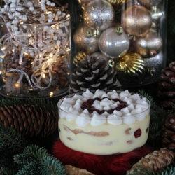 *138.Tiramisù natalizio di Cinzia