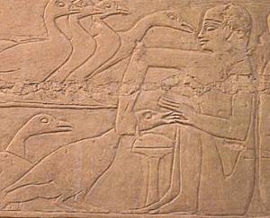 Des-Egyptiens-en-train-de-gaver-des-oies-2