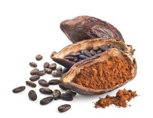 Cacao per aromatizzare la crema