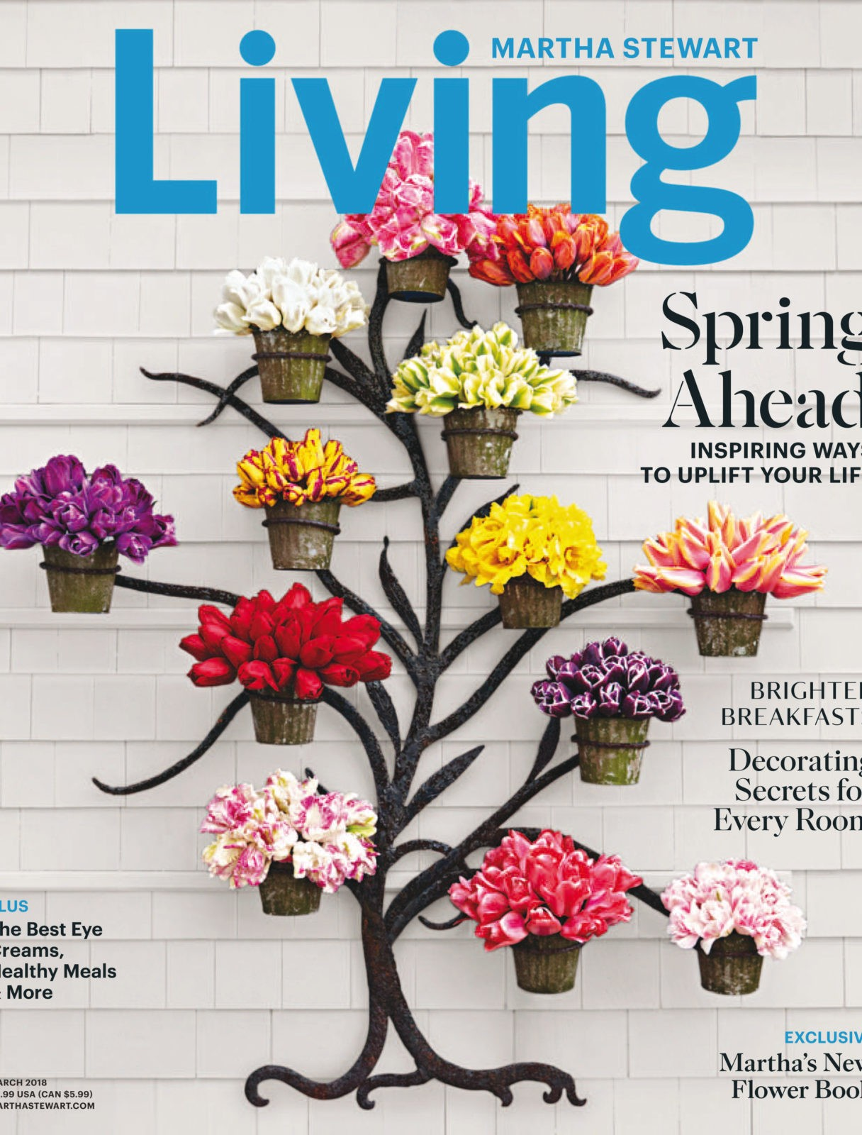 2018-03-01 Martha Stewart Living_downmagaz.com.pdf