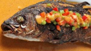 pesce cubano