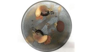 warabimochi come è servito in pasticceria